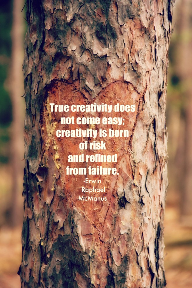 true creativity quote erwin raphael mcmanus