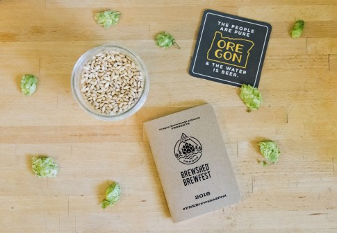Brewshed-Brewfest-ScoutBooks-web
