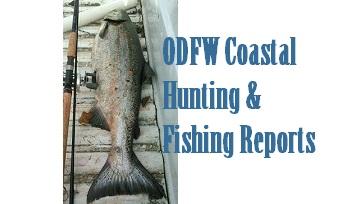 Coastal Fishing, Hunting Reports