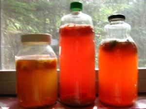Kombucha second ferment variety