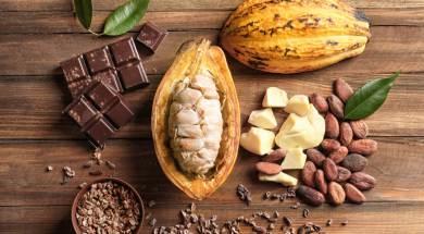 Czekolada z surowego kakao (2)