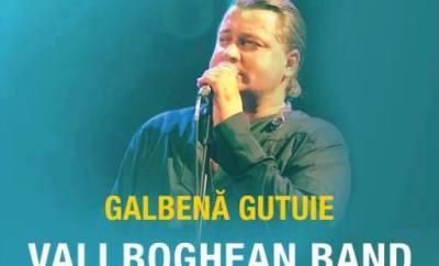 valy boghean concert1