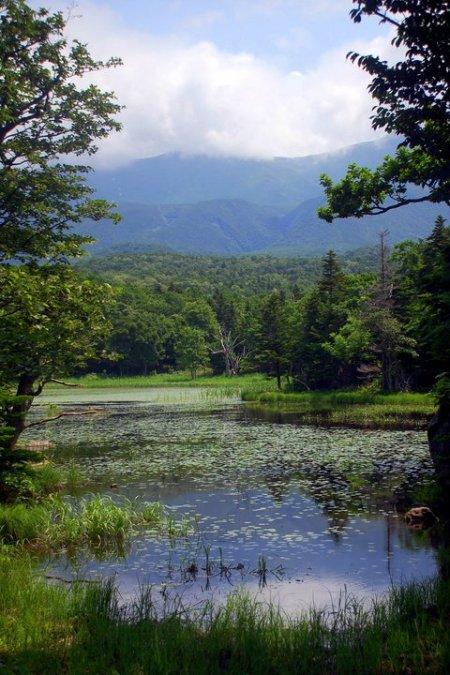 Uno dei Cinque laghi dello Shiretoko