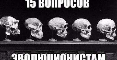 15 вопросов эволюционистам