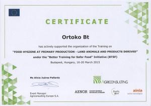 ortoko-certificate-kicsi