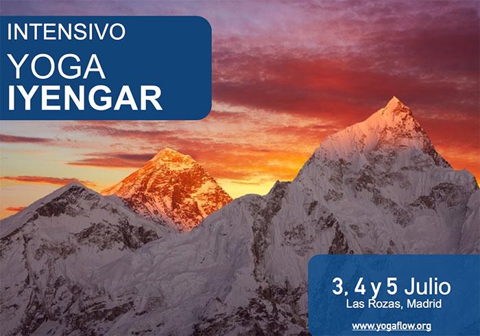 intensivo-yoga-iyengar-julio2015