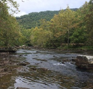 Nantahala River In May