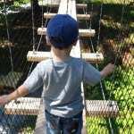 PANDAS : My Son's Healing Journey – Part II