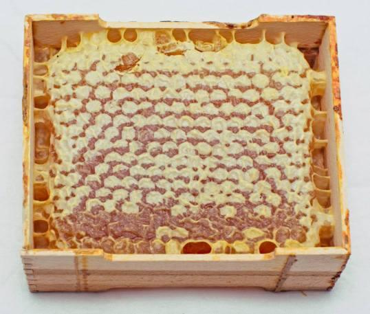 箱に入ったハチミツ