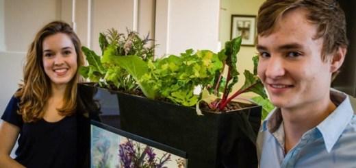 家庭菜園とアクアリウムが合体。米国の大学生が開発したアクアポニックス栽培キット「AquaSprouts」