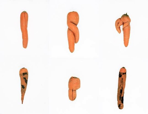 defective-carrots-2