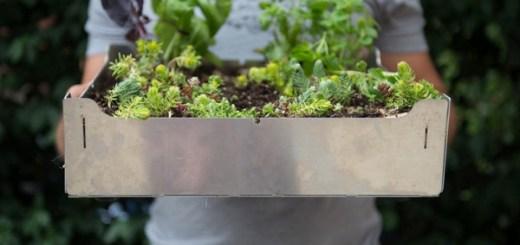 コンクリート上でも家庭菜園を。DIY菜園タイル「FAIRMOUNT」で屋上やベランダに緑を敷き詰めよう
