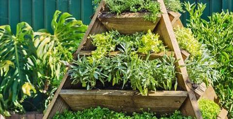 ポット型プランターはもう古い?ピラミッド型なら効率よく場所を、育てられる植物もたっぷりに