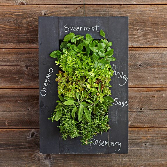 Chalkboard Wall Planter-1