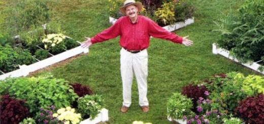手軽・簡単・子供から高齢者まで!アメリカで流行中の家庭菜園「スクエア・フット・ガーデニング」とは