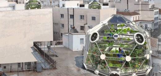 屋上で実現するエコな暮らし。スイスのドーム型農場は魚と野菜を同時に育てます!