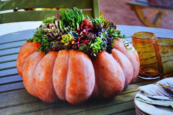 かぼちゃのオレンジと植物の緑が鮮やか♪
