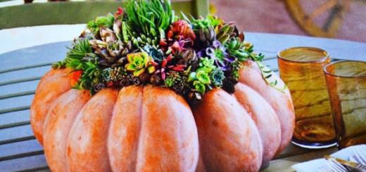 【アメリカで話題】かぼちゃと多肉植物でつくる鮮やかなグリーンオブジェ