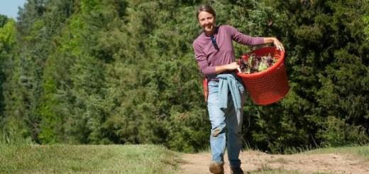自然に感謝し、食を肌で学ぼう。家庭菜園の舞台4選(庭・ベランダ・屋内・体験)