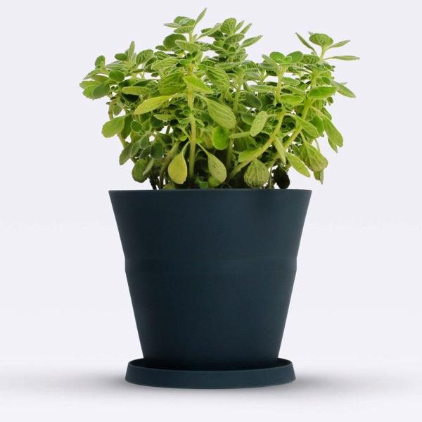 fold-pot-4