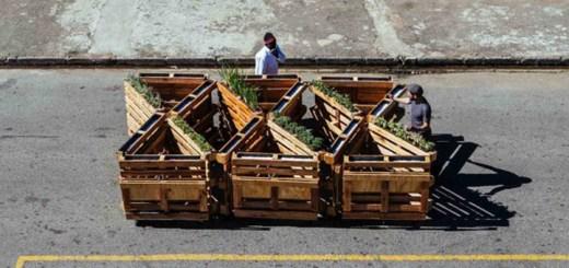 """パレットを再活用した""""動く菜園ベンチ""""。南アフリカのアーティストが考案"""