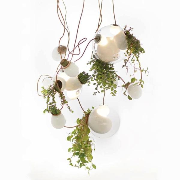 照明プランターはここまでオシャレに!カナダ生まれのシャンデリアみたいな植木