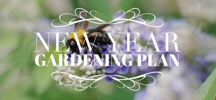 来年のガーデニング計画に。タイプ別植物(多年草、一年草等)の寿命と手入れの仕方