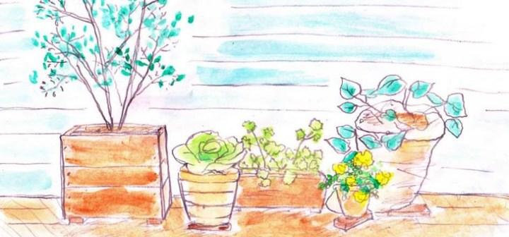 寄せ植えの新しいコツーー1プランターに1種類、自然素材の鉢で統一