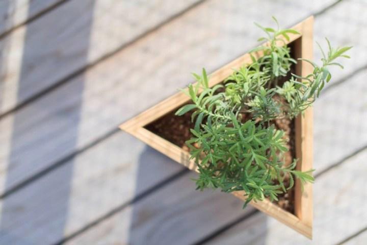 【新商品】ハーブ栽培セット「AROMA GARDEN」を3月1日に発売します
