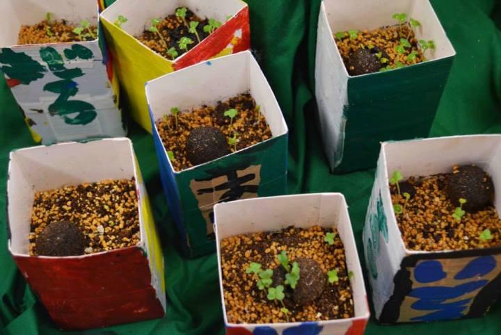 小学生100人と種だんご作り!造形展に向けて牛乳パックプランターで食育の作品を