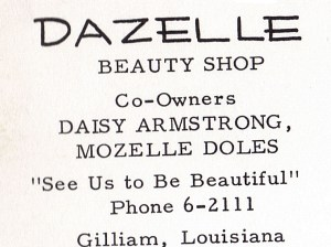 Dazelle Beauty Shop 2