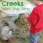Nature Study – Creeks