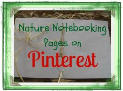 Nature Notebooking Pages