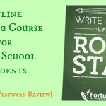 Rock Star Essay Review