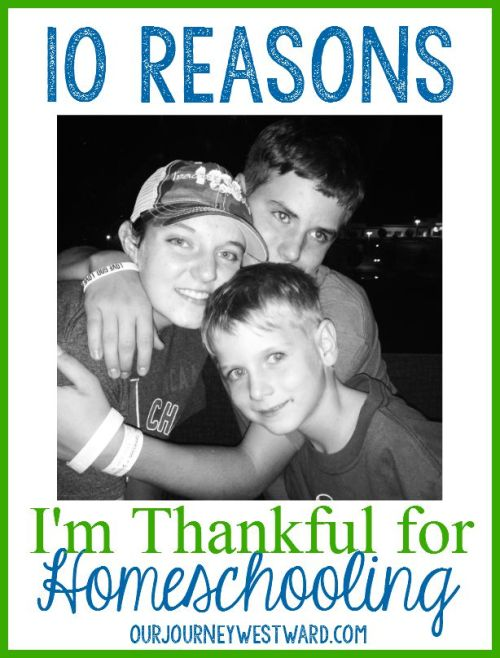 Most days are good, others are not - but in every day, I am thankful for homeschooling