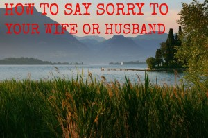 how to say sorry to your wife husband