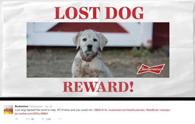 budweiser_lost_dog_reward