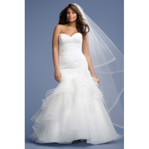 Medium Crop Of Wedding Dresses For Plus Size