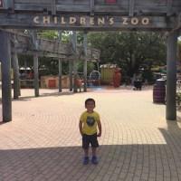 New Australian Adventure Awaits at Lowry Park Zoo