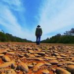 Hidrocídio brasileiro: a matança das águas