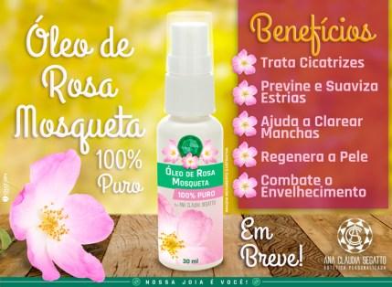 oleo-rosa-mosqueta-arte