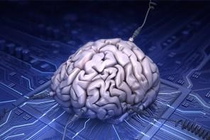 感覺恐怖!IBM 開始測試模仿人類大腦的人工智能軟件