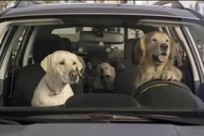 Subaru 捨「Super Bowl」黃金廣告時段,另外推出「DOG TESTED. DOG APPROVED.」系列廣告!