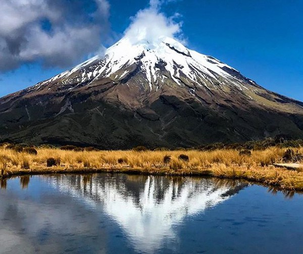 109f_Pandora_on_the_road_NZ