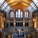 Travel Photography – Natural History Museum