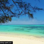10 Things To Do in Zanzibar on a Backpacker's Budget