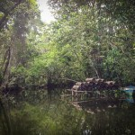Dinghy-splorin' the Rio Dulce