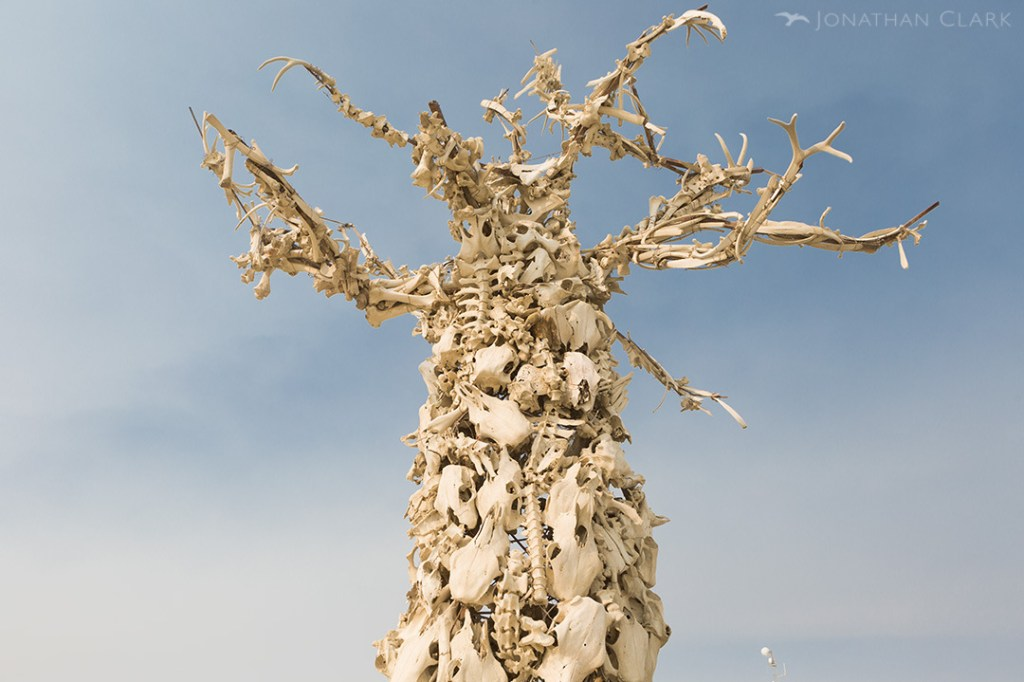 burning-man-2013-cargo-cult-black-rock-city-jonathan-clark-skull-tree