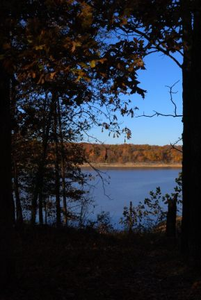 View across Harry S.Truman Lake at Berry Bend