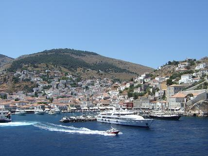 Beautiful Hydra